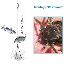 Vue 5 : Bas de Ligne Flashmer Montage à Crabe