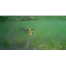 Vue 5 : Caméra Savagear WaterWolf Underwater UW