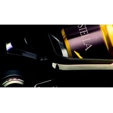 Vue 5 : Moulinet Shimano Stella SW 2013