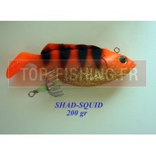 Vue 5 : Shad Squid 200 gr