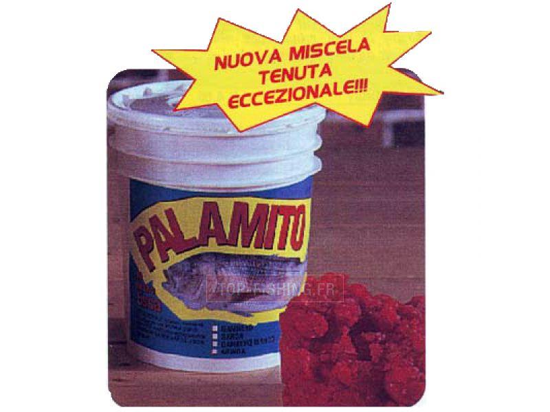 Vue 1) Broumé Pate Palamito