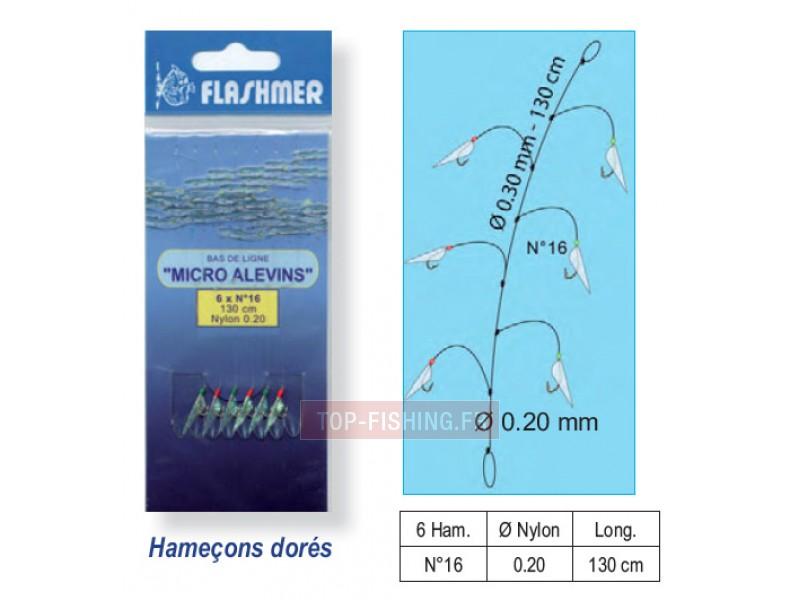 Les rapports sur la pêche dans le domaine dIvanovo