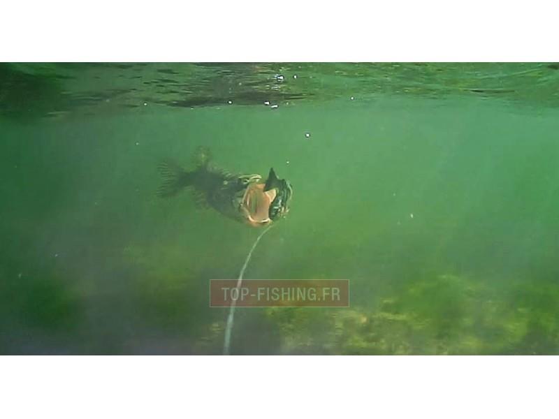 Vue 3) Caméra Savagear WaterWolf Underwater UW