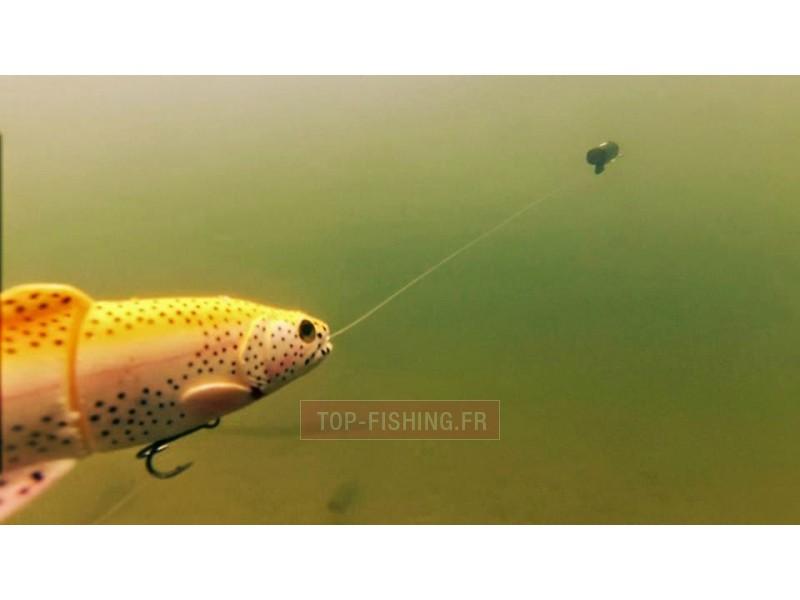 Vue 4) Caméra Savagear WaterWolf Underwater UW