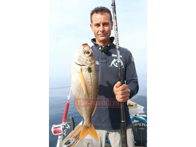 Vue 5) Canne Italcanna Nautilus Special Grand Fond