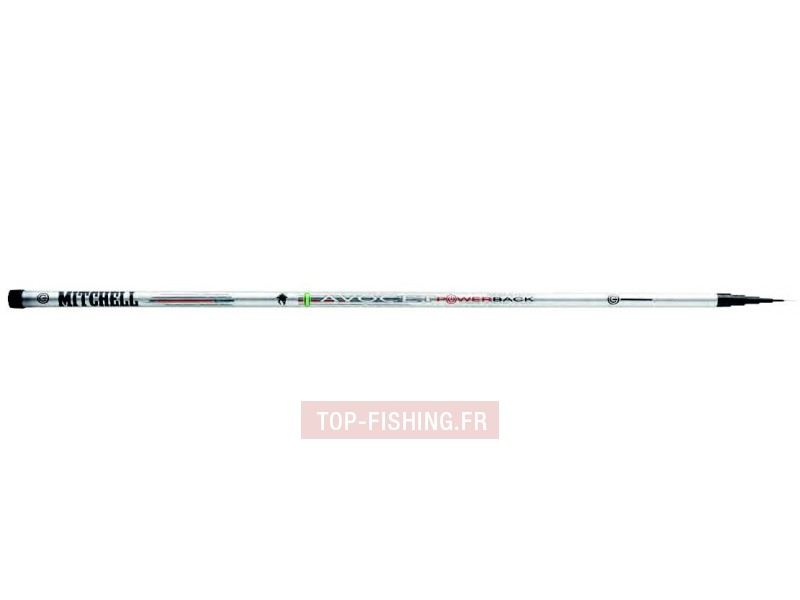 Vue 1) Canne Mitchell Avocet Powerback PutOver Pole