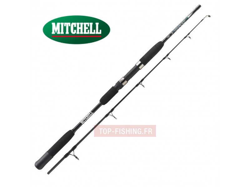 Vue 1) Canne Mitchell Tanager Jig