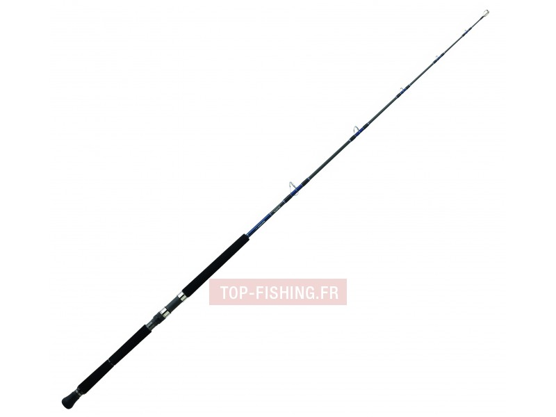 Vue 2) Canne Daiwa Saltiga Deep Expedition