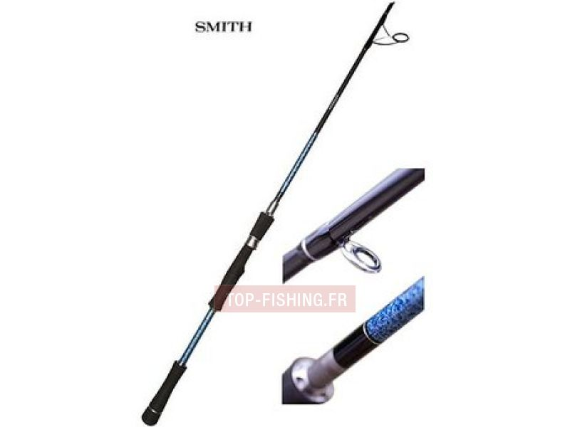 Vue 1) Canne Smith Dragonbait Seabass