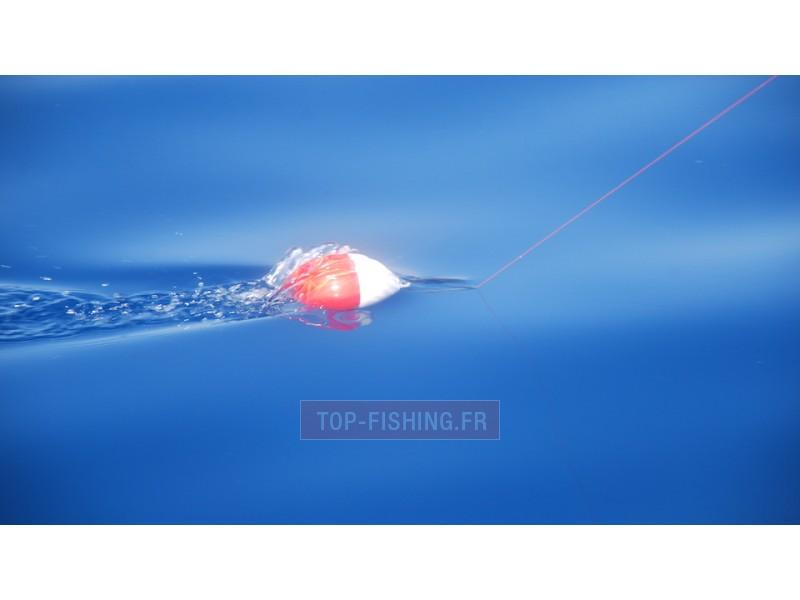 Vue 2) Flotteur rapide Top Sea Release Tuna Plug