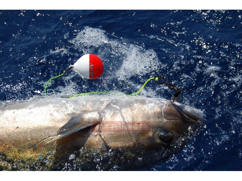 Vue 3) Flotteur rapide Top Sea Release Tuna Plug