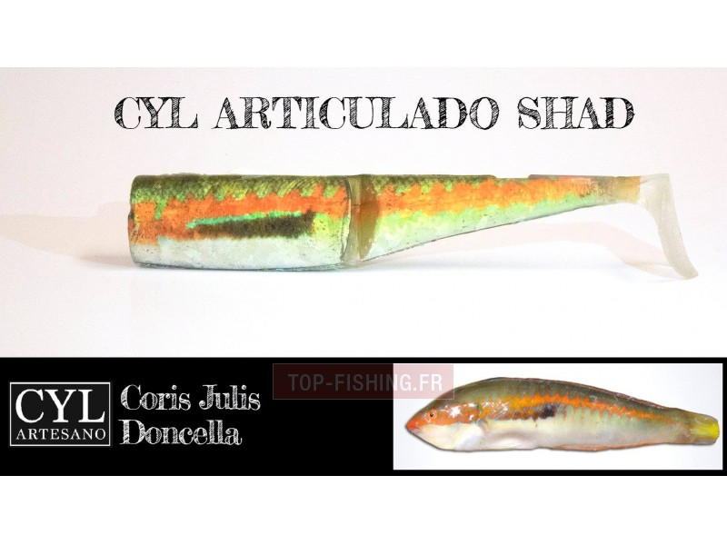 Vue 3) Leurre Cyl Artesano Articulado Shad 170mm