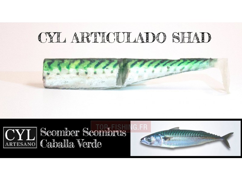 Vue 5) Leurre Cyl Artesano Articulado Shad 170mm