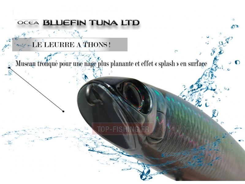 Vue 1) Leurre Shimano Ocea Bluefin Tuna