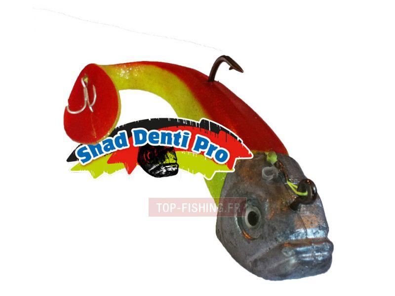 Vue 3) Shad Denti Pro