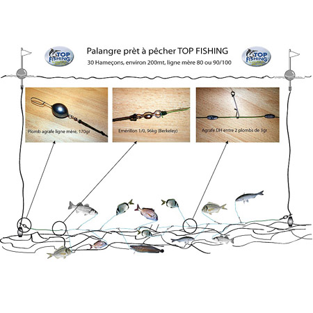 Vue 2) Agrafes Palangre INOX TOP-FISHING