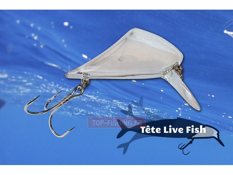 Vue 1) Tête transparente Live Fish