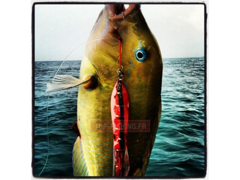 Vue 5) Top Sea Slow Squid 120gr