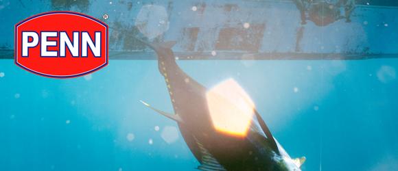 Ensemble Spinning Penn pour la pêche au thon