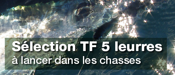 Sélection de Leurres à lancer pour la pêche au thon