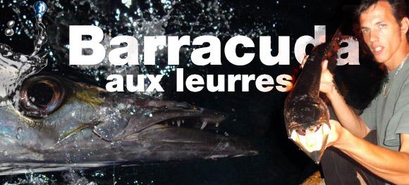 Pêche des barracudas aux leurres