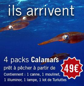 Packs Calamars