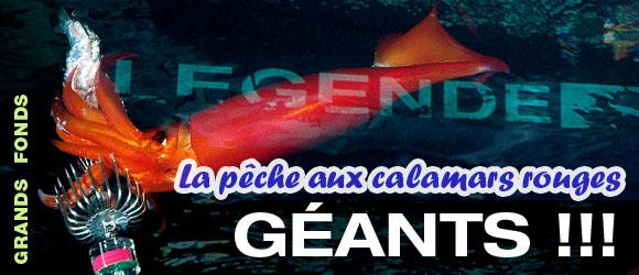 Le calamar rouge, le mystère des abysses