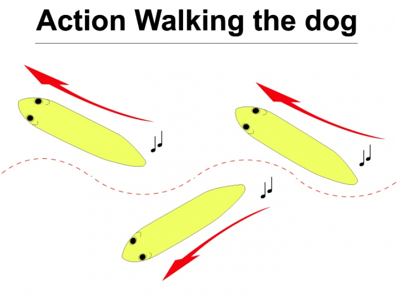 Animation d'un stickbait en Walking the Dog