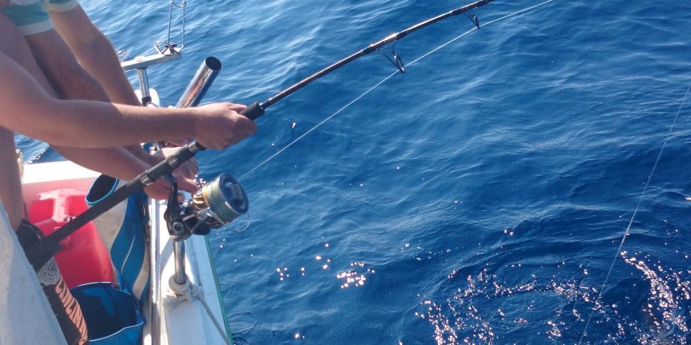 Pêche d'un thon, le Stella SW à l'oeuvre