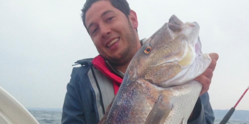 Un énorme denti de plus de 9kg pêché en méditérrannée