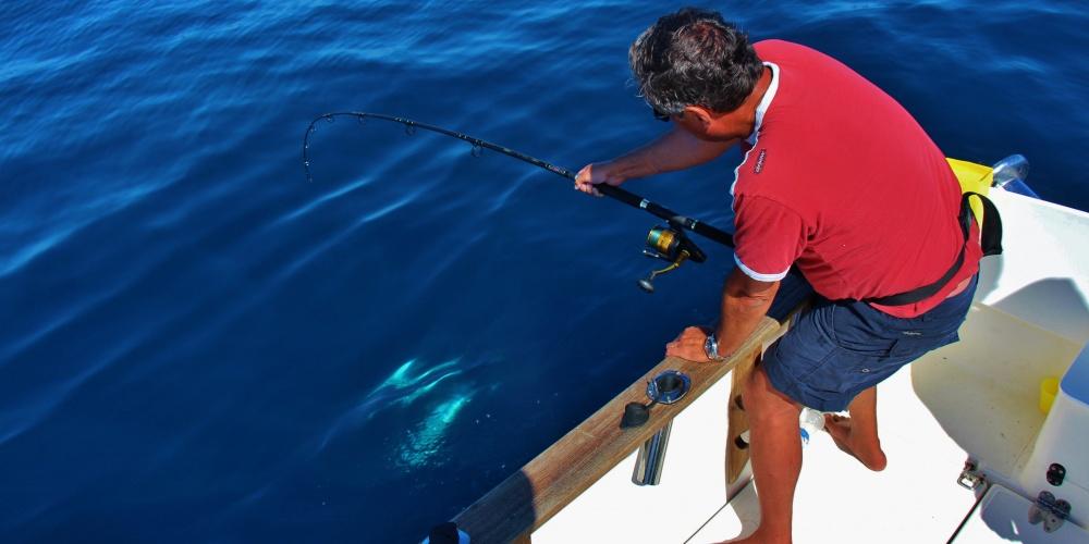 Pêche au thon avec Spinfisher 6500