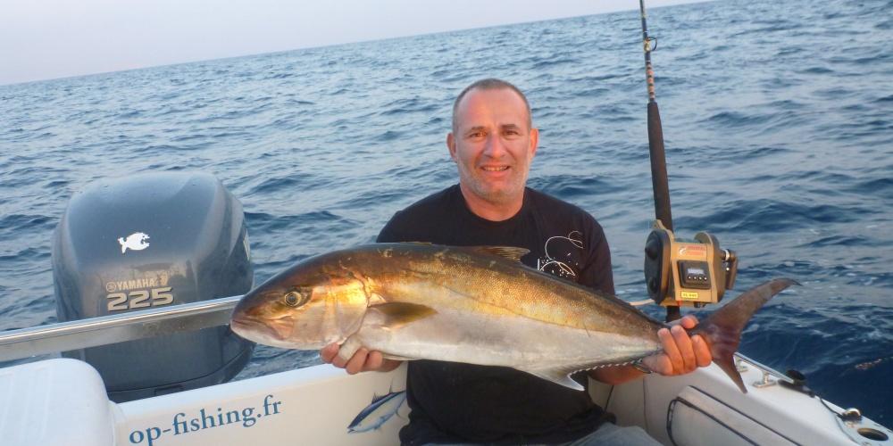 Sériole de 11kg pêchée a la traine avec un calamar vivant et un plomb d'1 kg