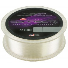 fluorocarbone-berkley-direct-connect-cf-600-1-200-m.jpg