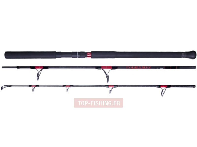 Vue 5) Canne Smith Offshore Stick GTK