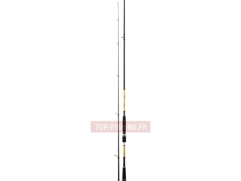 Vue 5) Canne Daiwa Crossfire Squid Party