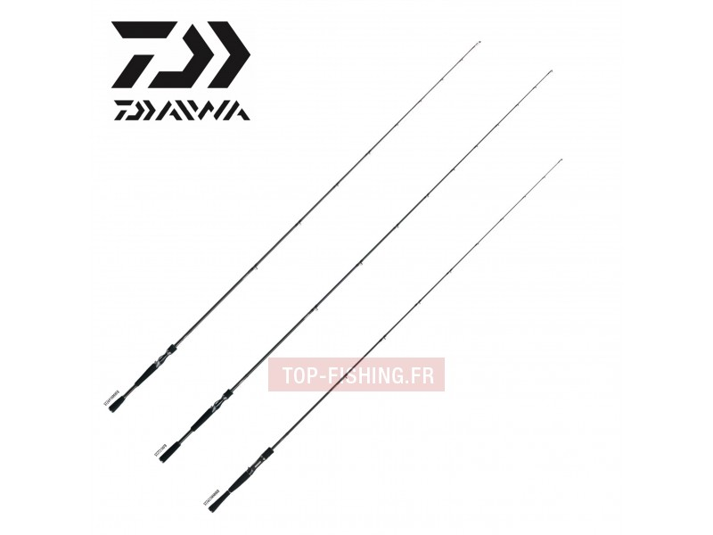 Canne Casting Daiwa New Steez