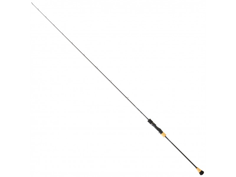 Canne Daiwa Saltiga Slow Jigging