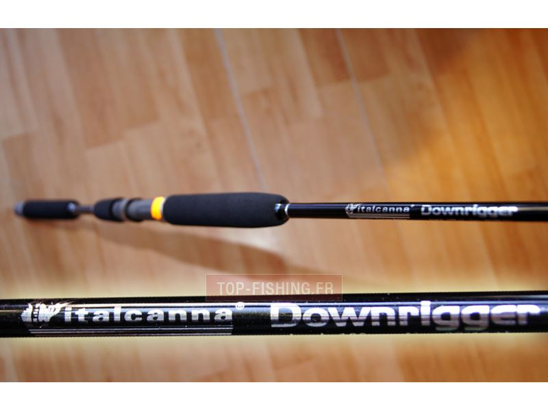 Vue 5) Canne Italcanna Downrigger