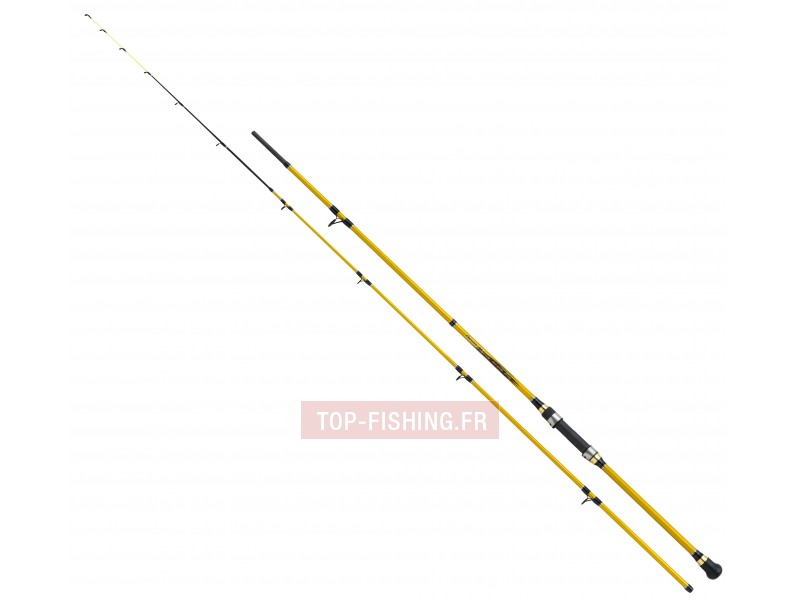canne-shimano-beastmaster-boat-quiver.jpg