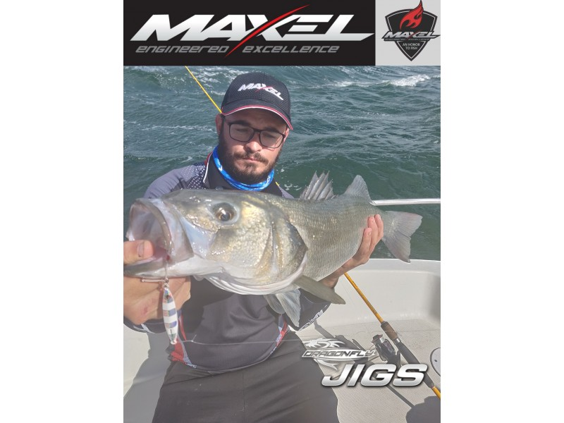 Vue 5) Slow Jig Maxel Dragonfly 80g
