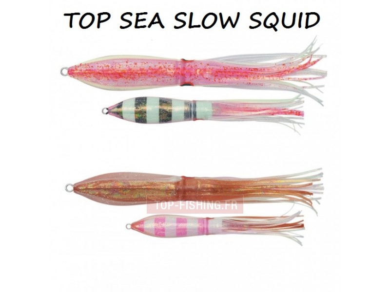 Vue 5) Leurre Sea Falcon Slow Squid 180gr