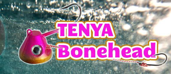 Découvrez le Tenya Bonehead