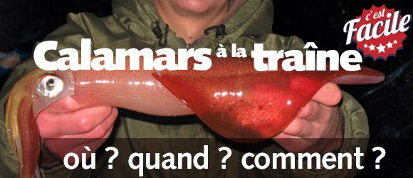 Calamars à la traîne : une pêche facile et productive !