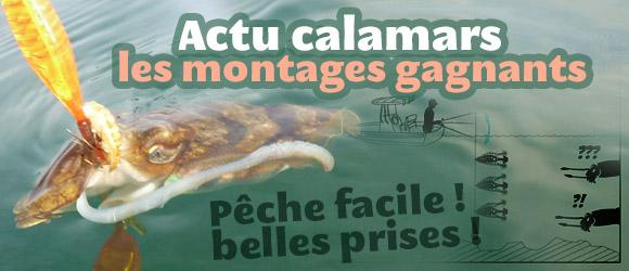 Montages pour la pêche de céphalopodes