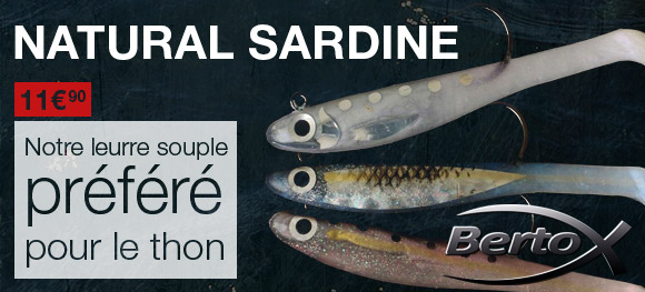 Natural Sardine Bertox ou Small Tinuta : notre leurre souple préféré pour le thon