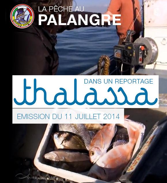 La Pêche au Palangre à l'honneur dans Thalassa !