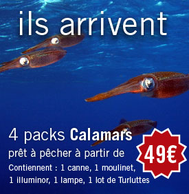 Packs Calamars