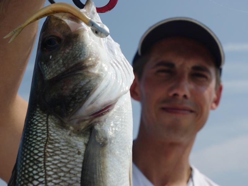 7 têtes plombées pêche Flashmer Vibr action 40g