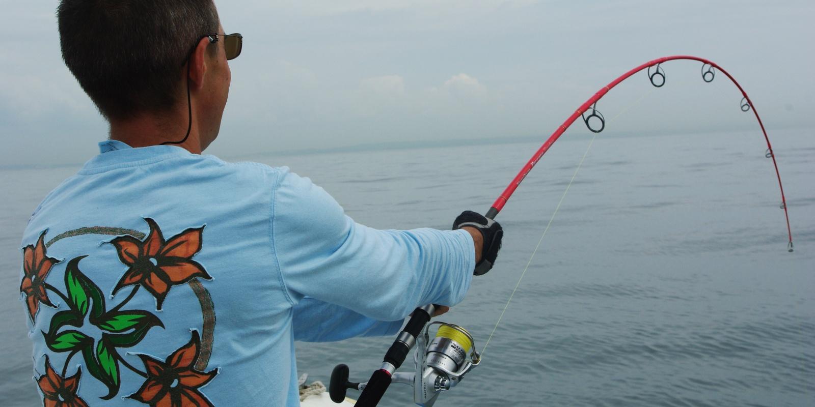 Fil De Peche Rose les fluorocarbone japonais pour la pêche en mer