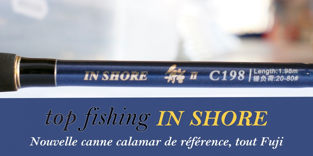 Annonce Canne In Shore
